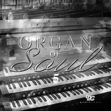 Organ Of Soul 5