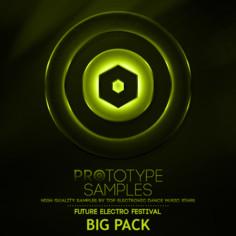 Future Electro Festival Big Pack