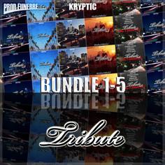Tribute Bundle (Vols 1-5)