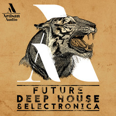 Future Deep House & Electronica