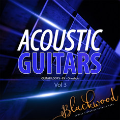 Acoustic Guitars 3