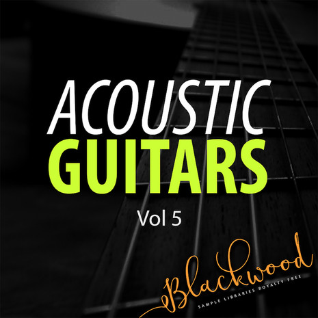 Acoustic Guitar Sound Pack | SoundPacks.com