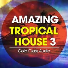 Amazing Tropical House Vol 3