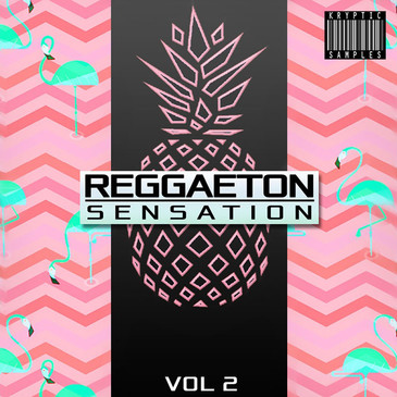 Reggaeton Sensation Vol 2