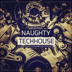 Naughty Tech House