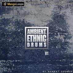 Ambient Ethnic Drums Vol 1