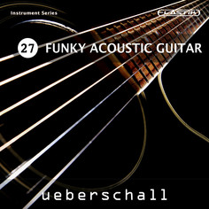 Funky Acoustic Guitar