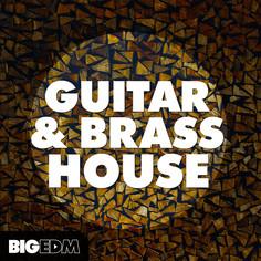 Big EDM: Guitar & Brass House