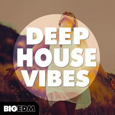 Big EDM: Deep House Vibes