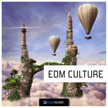 EDM Culture