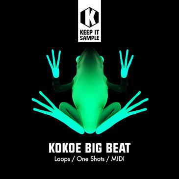 Kokoe Big Beat