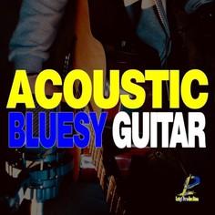 Acoustic Bluesy Guitar