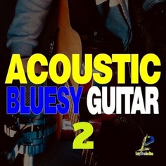 Acoustic Bluesy Guitar 2