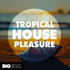 Big EDM: Tropical House Pleasure