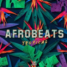 AfroBeats Tropical
