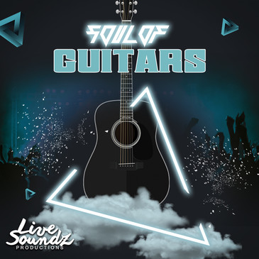 Souls Of Guitars
