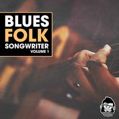 Blues Folk Songwriter Vol 1