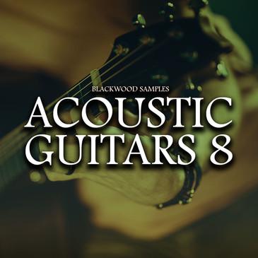 Blackwood Samples: Acoustic Guitars 8
