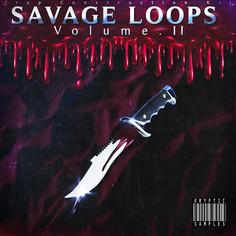 Savage Loops Vol 2