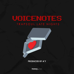 Voicenotes - Trapsoul Late Nights