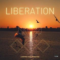 Liberation: Beautiful Melodic Loops