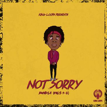 Not Sorry Bundle (Vols 1-3)
