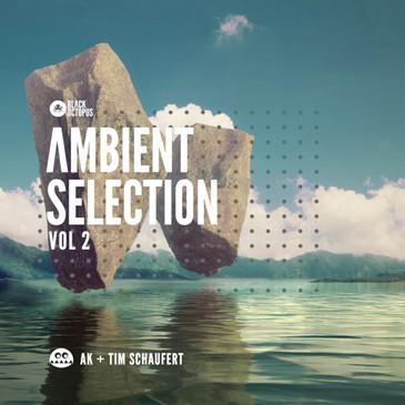 Ambient Selection Vol 2: AK & Tim Schaufert