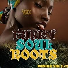 Funky Soul Roots Bundle (Vol 1-7)