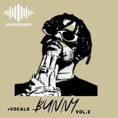 Bunny Vol 2