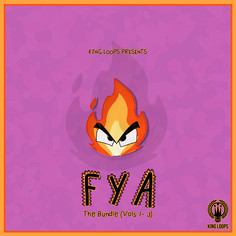 FYA Bundle (Vols 1-3)