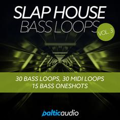 Slap House Bass Loops Vol 3