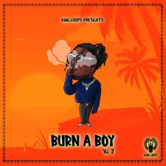 Burn A Boy Vol. 2