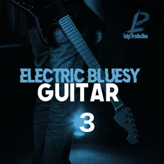 Electric Bluesy Guitar 3