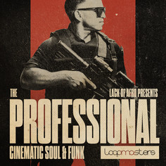 The Professional: Cinematic Soul & Funk