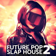 Future Pop Slap House 2