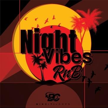 Night Vibes RnB